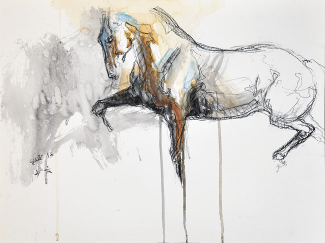 Equine Nude 44t
