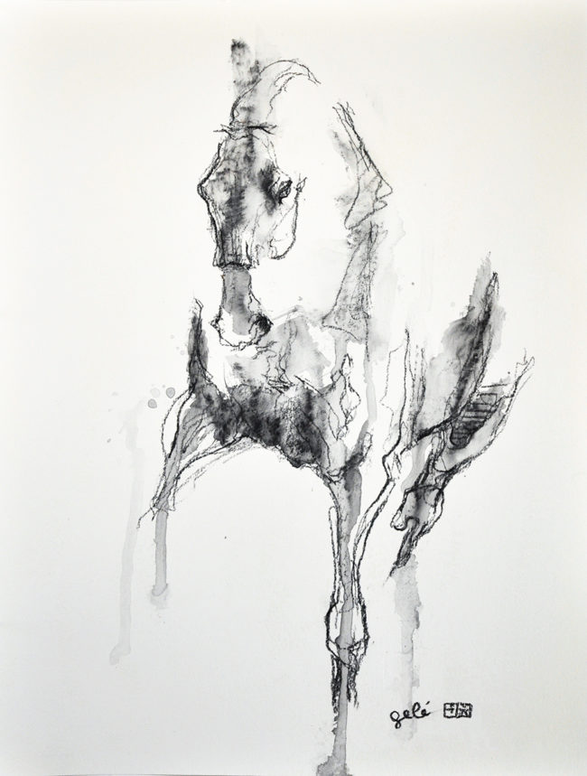 Equine Nude 47t