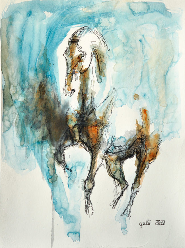 Equine Nude 65t