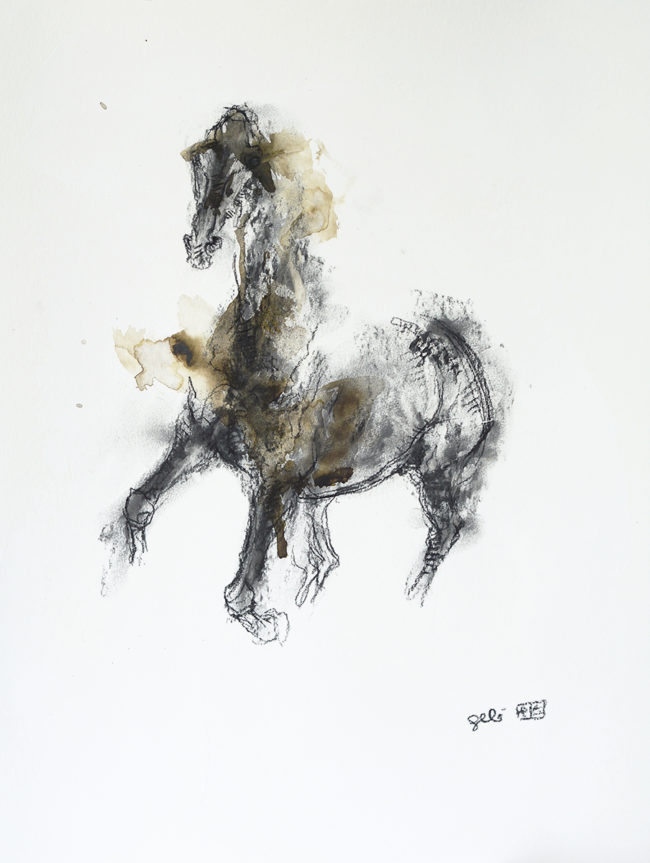 Equine Nude 72t