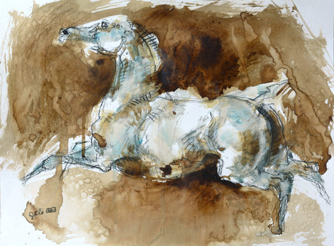 Equine Nude 103t