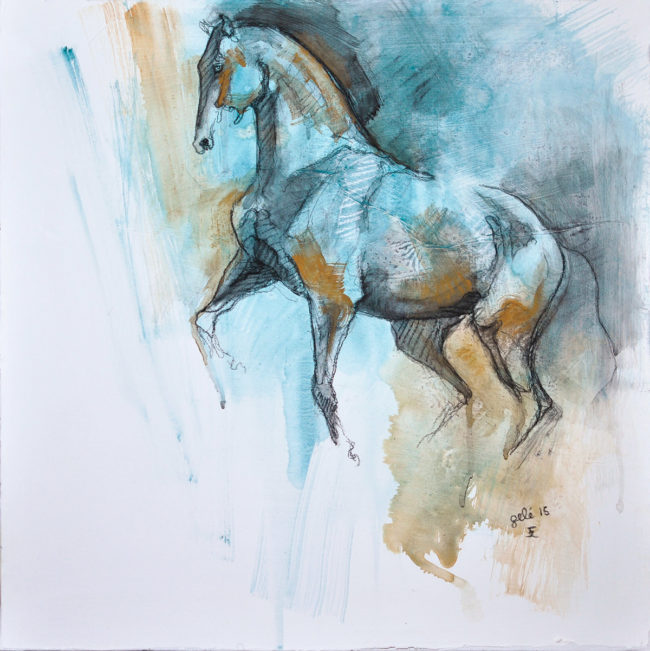Equine Nude 7t