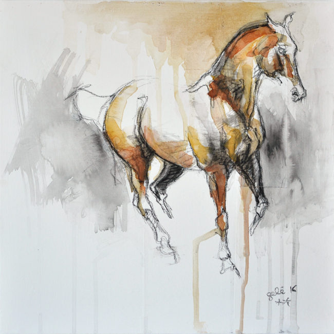 Equine Nude 19t