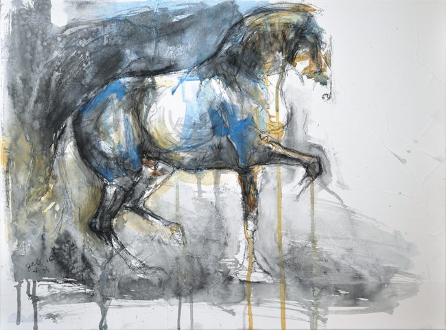 Equine Nude 33t