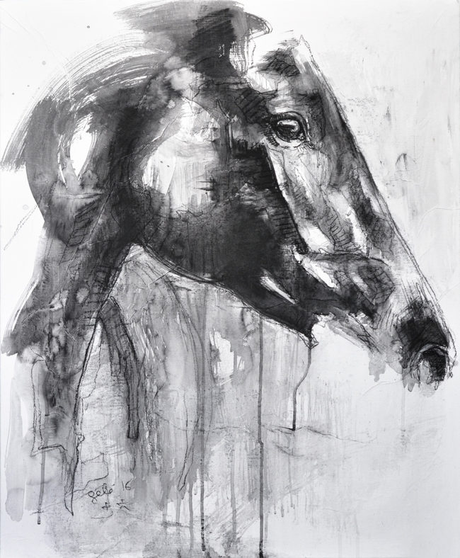 Equine Nude 35t