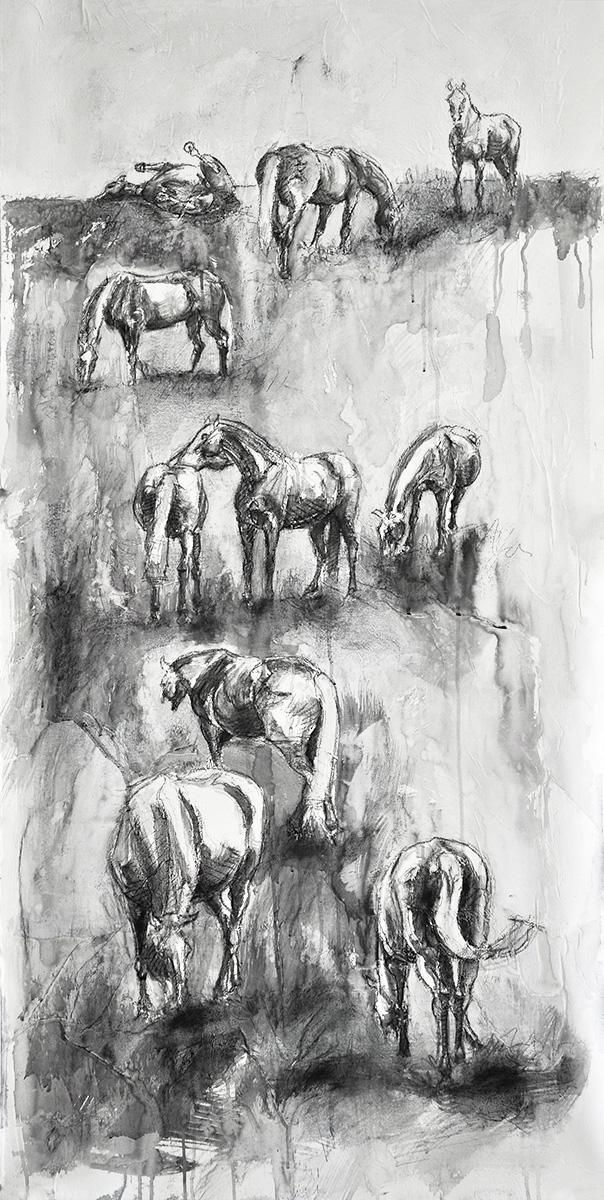 Equine Life 4