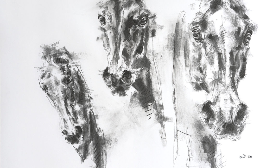 Face to face 4p charcoal drawing of 3 horses