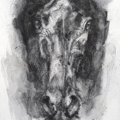 face to face 7p charcoal drawing